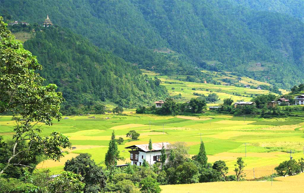 Bhutan tour package with punakha valley