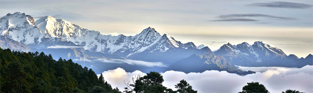 Have Your Considered Langtang Trekking? | One of the Finest Mountain Trekking In Nepal